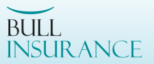 logo Bull